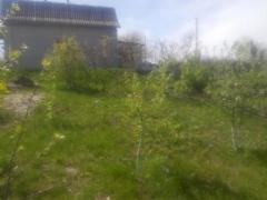 Дом для дачи или жилья, рядом Днепр, лес. 20000 у.е. Триполье