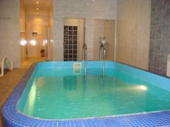 House for rent with a warm pool on the Desna